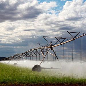 Impulso a la productividad agrícola con riego Pivot