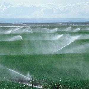 Sistemas de riego sistema de riego por aspersion for Sistema de riego por aspersion para jardin