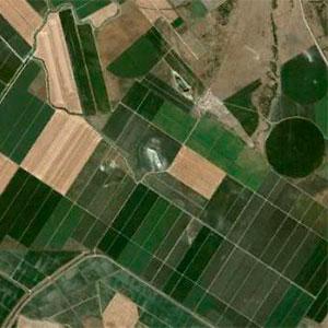 Pivots y lineales en la explotación agrícola Las Lomas
