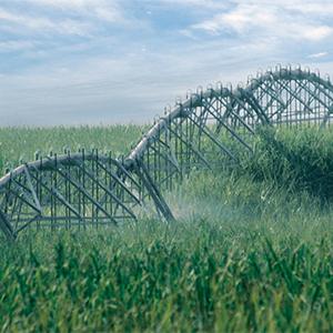 Sistema Pivot en terreno ondulado para caña de azúcar