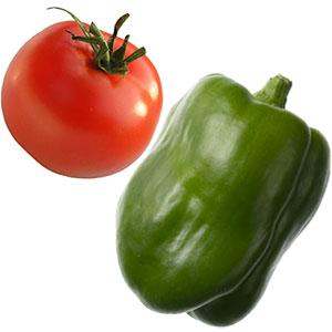Ritmo de crecimiento en tomate y pimiento