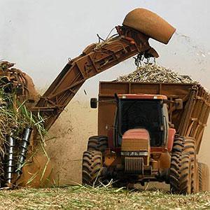 Producción de etanol a partir de caña de azúcar