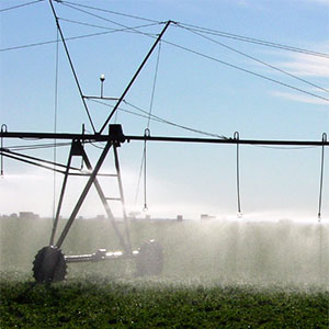 aspersión con Pivot para aplicar fertirrigación