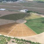 Imaginación y nuevas alternativas en la agricultura