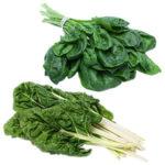 Crece la demanda de cultivo de acelga y espinaca