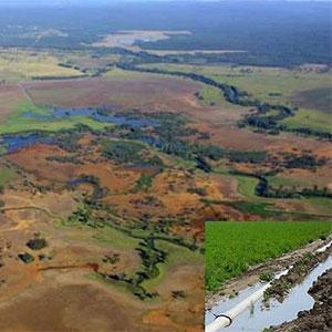 Riego por aspersión y drenajes para reducir la salinidad de los suelos