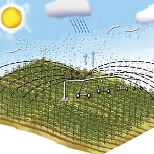 Transpiración con sistemas de riego Pivot