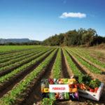 Venta directa de productos agrícolas