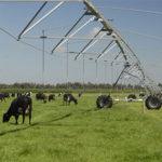 pivot Central para mejorar el rendimiento de los cultivos