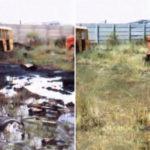 turba contra problemas medioambientales
