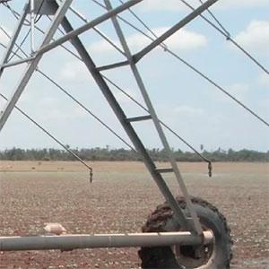 Huella seca para Pivot