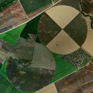 vista aérea de campos circulares regados con Pivotes