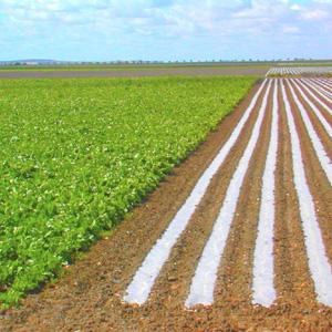 agricultura y agua de riego