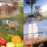 desarrollo en el medio rural