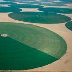 círculos verdes formados por pivotes de riego