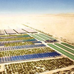 Cultivar en el desierto con agua de mar