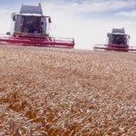 Contratar trabajos agrícolas a terceros
