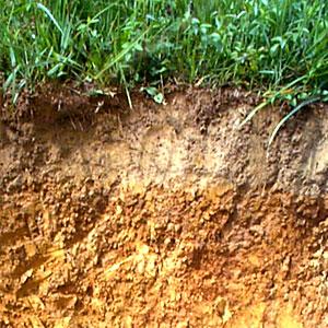 almacenamiento de agua del suelo