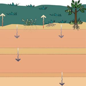infiltracion de agua en el suelo