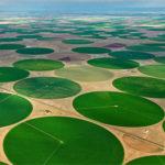 cultivos circulares
