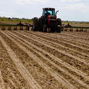 mejorar los beneficios agrícolas