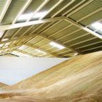 almacenamiento de granos y cereales