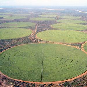 riego con pivot circular
