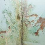 humedad en paredes por capilaridad