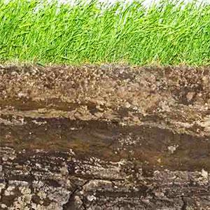 regadío agrícola